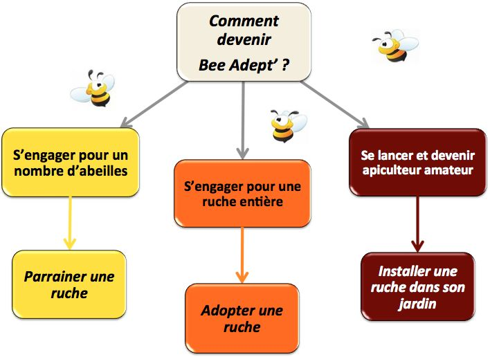 Comment devenir Bee Adept'
